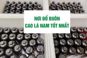 noi-do-buon-cao-la-nam-tot-nhat